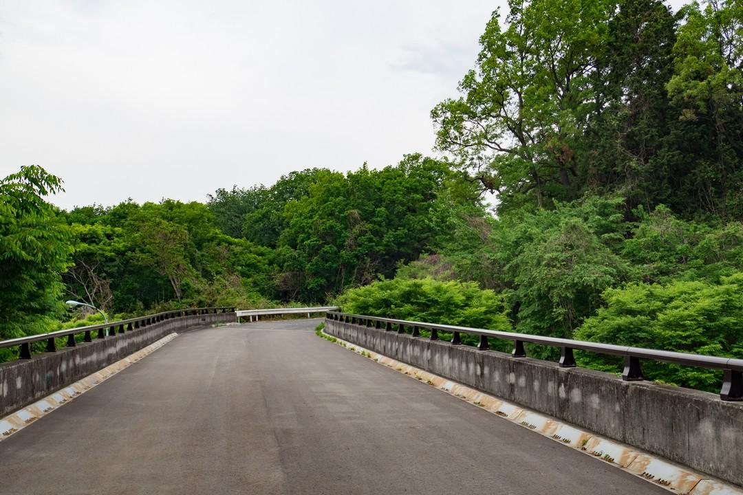 多摩よこやま道のゴール付近の光景