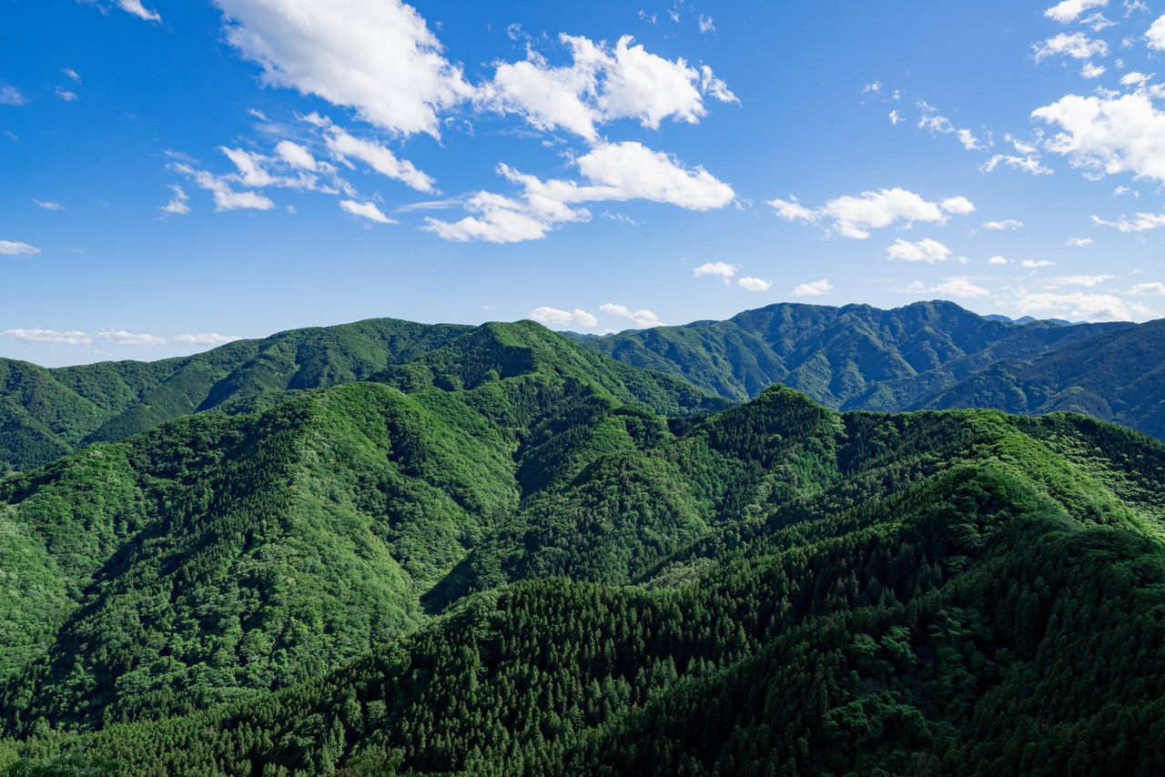 横瀬二子山から見た武川岳