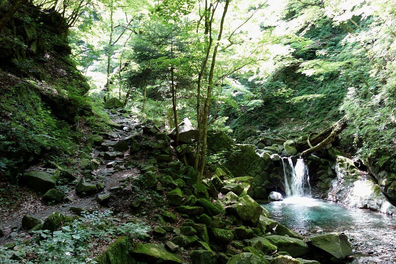 用木沢ルートの登山道