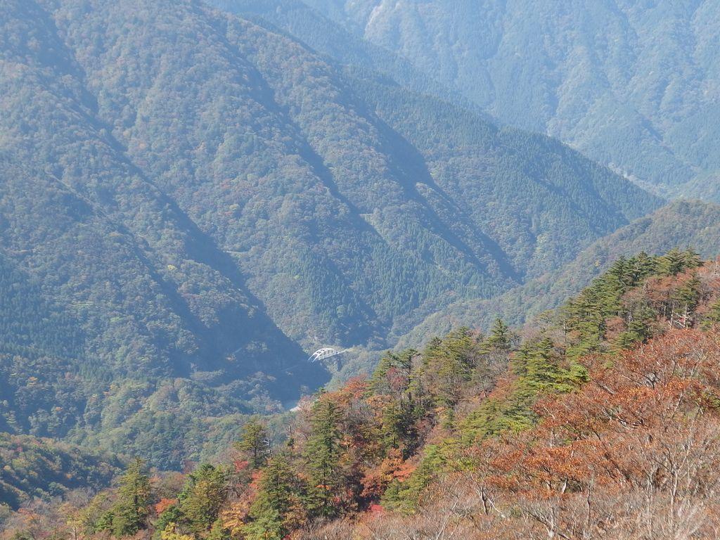 丹沢 檜皮橋