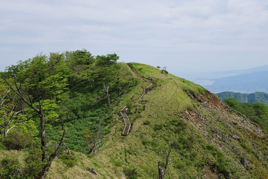 丹沢主脈の木道