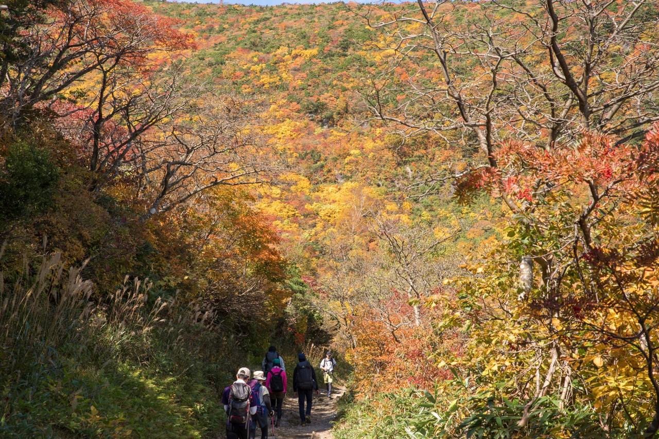 安達太良山 勢至平の紅葉