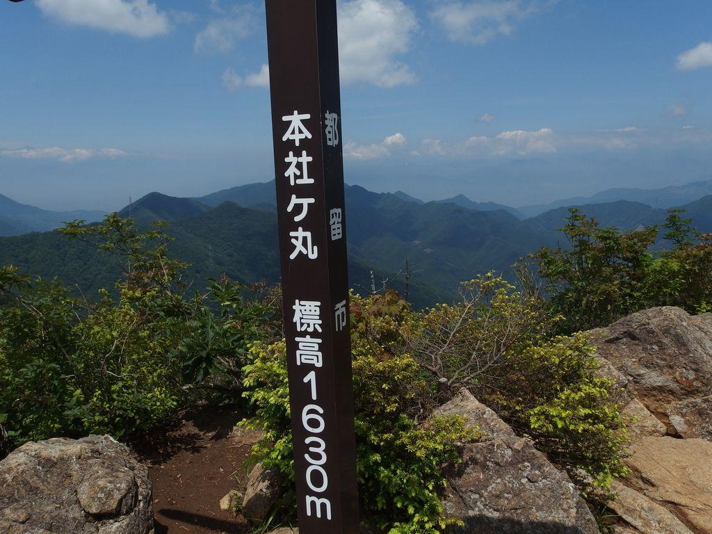 150711本社ヶ丸_023