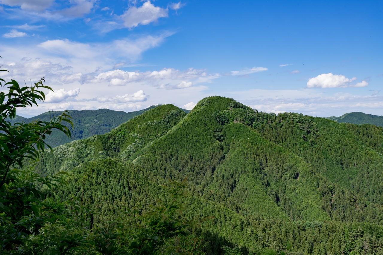 焼山から見た横瀬二子山