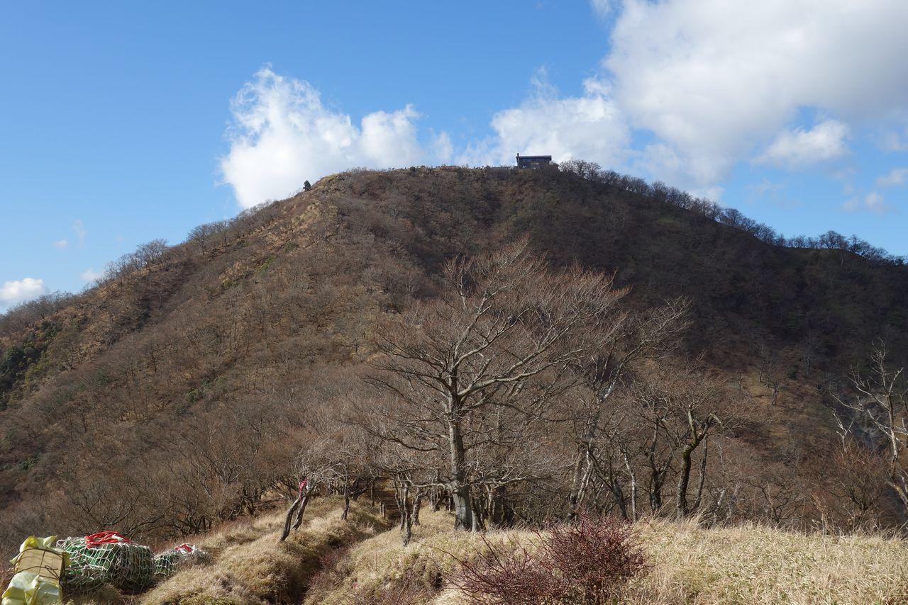 161210丹沢山_053