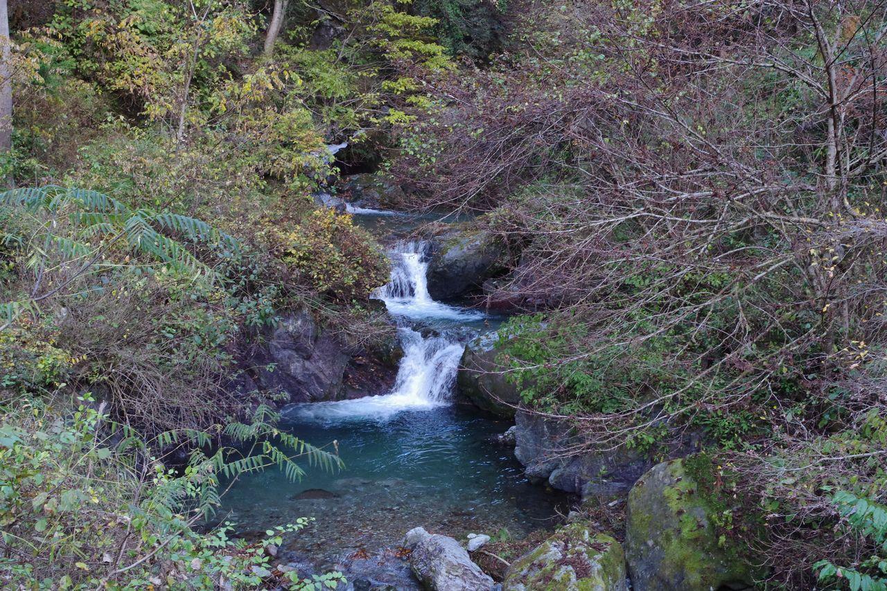 武甲山 浦山口登山道の三段滝