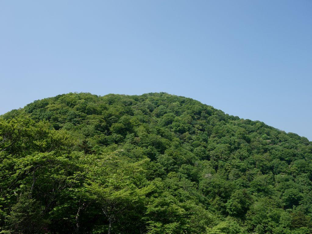 150711本社ヶ丸_019