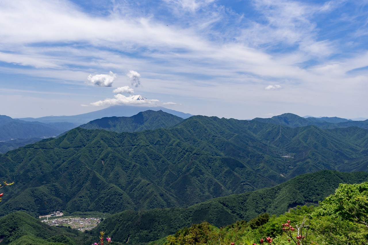 170603滝子山_053